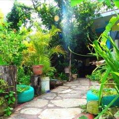 Отель & Hostal Yaxkin Copan Гондурас, Копан-Руинас - отзывы, цены и фото номеров - забронировать отель & Hostal Yaxkin Copan онлайн фото 2