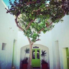 Отель Lemon Tree Bed & Breakfast фото 6