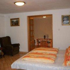 Отель Szamoca Vendeghaz Венгрия, Силвашварад - отзывы, цены и фото номеров - забронировать отель Szamoca Vendeghaz онлайн комната для гостей фото 2