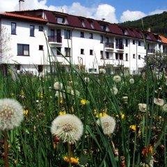 Отель Family Hotel Smolena Болгария, Чепеларе - отзывы, цены и фото номеров - забронировать отель Family Hotel Smolena онлайн фото 27