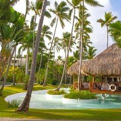 Отель Impressive Resort & Spa Punta Cana – All Inclusive фото 11