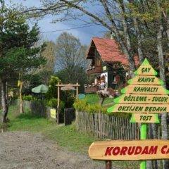 Abant Korudam Konak Pansiyon Турция, Болу - отзывы, цены и фото номеров - забронировать отель Abant Korudam Konak Pansiyon онлайн приотельная территория