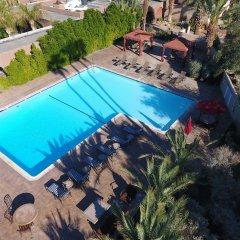 Отель Borrego Springs Resort and Spa с домашними животными