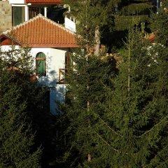Отель Villas & SPA at Pamporovo Village Пампорово фото 11