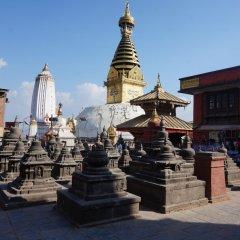 Отель Alpine Hotel & Apartment Непал, Катманду - отзывы, цены и фото номеров - забронировать отель Alpine Hotel & Apartment онлайн фото 3