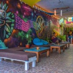 Отель Tres Mundos Hostel Мексика, Плая-дель-Кармен - отзывы, цены и фото номеров - забронировать отель Tres Mundos Hostel онлайн фото 2