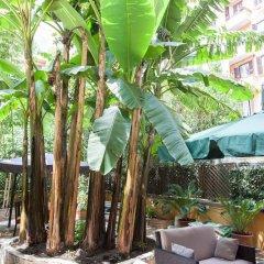 Отель Almes Roma B&B фото 9