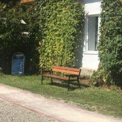 Гостиница Даурия в Листвянке - забронировать гостиницу Даурия, цены и фото номеров Листвянка фото 14