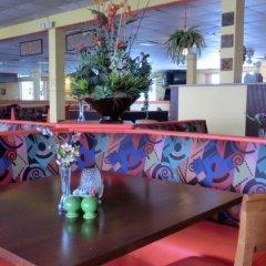 Отель Dolphin Beach Resort гостиничный бар