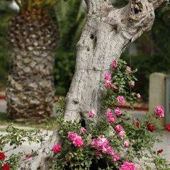 Отель Mediterranee Thalasso-Golf Хаммамет фото 3