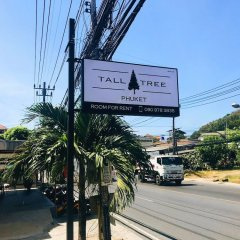 Отель Tall Tree Kata Phuket пляж Ката городской автобус