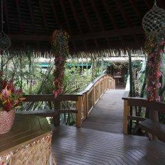 Отель Colo-I-Suva Rainforest Eco Resort Вити-Леву фото 5