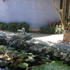Отель Hacienda San Pedro Nohpat фото 7