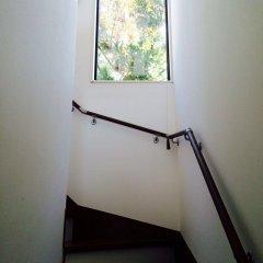 Отель Zen Chalets Hakuba Хакуба интерьер отеля фото 2