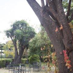 Отель Villa Jerez Испания, Херес-де-ла-Фронтера - отзывы, цены и фото номеров - забронировать отель Villa Jerez онлайн фото 2