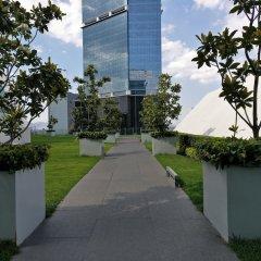 Отель Reforma 222 Мексика, Мехико - отзывы, цены и фото номеров - забронировать отель Reforma 222 онлайн развлечения