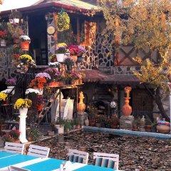 Отель Kapor Organik çiftlik evi Аванос развлечения