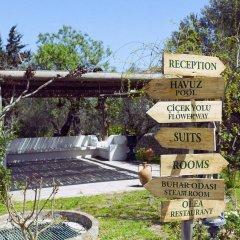 Отель Olive Farm Of Datca Guesthouse - Adults Only Датча городской автобус