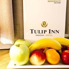 Отель Tulip Inn Padova Падуя в номере