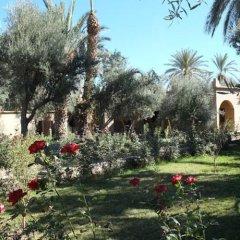 Отель Ksar Elkabbaba фото 4