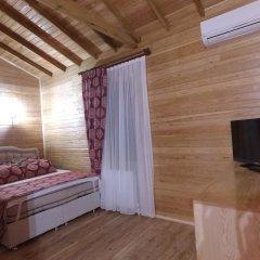 Отель Gököz Natural Park удобства в номере