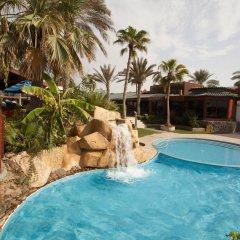 Отель Dubai Marine Beach Resort & Spa ОАЭ, Дубай - 12 отзывов об отеле, цены и фото номеров - забронировать отель Dubai Marine Beach Resort & Spa онлайн с домашними животными
