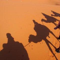 Отель Auberge Kasbah Des Dunes Марокко, Мерзуга - отзывы, цены и фото номеров - забронировать отель Auberge Kasbah Des Dunes онлайн приотельная территория фото 2