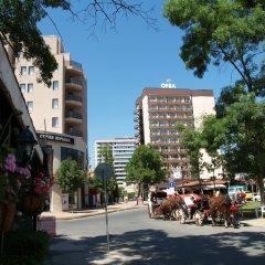 Отель Orel - Все включено Болгария, Солнечный берег - отзывы, цены и фото номеров - забронировать отель Orel - Все включено онлайн фото 7