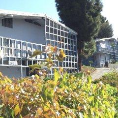 Отель Holiday Lodge США, Лос-Анджелес - отзывы, цены и фото номеров - забронировать отель Holiday Lodge онлайн фото 2