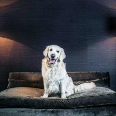 Отель The Emblem Hotel Чехия, Прага - 3 отзыва об отеле, цены и фото номеров - забронировать отель The Emblem Hotel онлайн с домашними животными