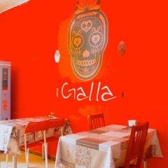 Hotel Galla питание