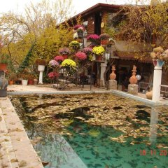 Отель Kapor Organik çiftlik evi Аванос фото 9