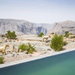 Отель Anantara Al Jabal Al Akhdar Resort Оман, Низва - отзывы, цены и фото номеров - забронировать отель Anantara Al Jabal Al Akhdar Resort онлайн пляж фото 2