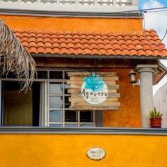 Отель Agavero Hostel Мексика, Канкун - отзывы, цены и фото номеров - забронировать отель Agavero Hostel онлайн гостиничный бар фото 4