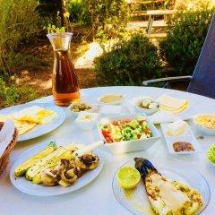 Отель Tur Sinai Organic Farm Resort Иерусалим питание фото 2