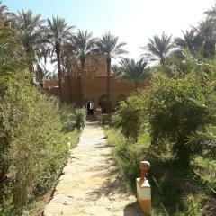 Отель Riad Tagmadart Ferme D'hôte Марокко, Загора - отзывы, цены и фото номеров - забронировать отель Riad Tagmadart Ferme D'hôte онлайн