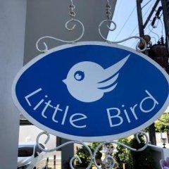 Отель Little Bird Phuket Таиланд, Пхукет - отзывы, цены и фото номеров - забронировать отель Little Bird Phuket онлайн фото 8