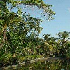 Отель Riu Naiboa All Inclusive Доминикана, Пунта Кана - 1 отзыв об отеле, цены и фото номеров - забронировать отель Riu Naiboa All Inclusive онлайн приотельная территория