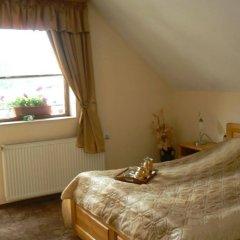 Отель Chichin Болгария, Банско - отзывы, цены и фото номеров - забронировать отель Chichin онлайн комната для гостей фото 3