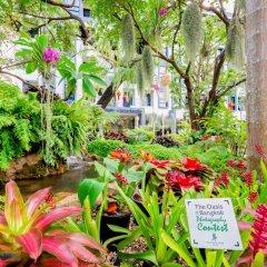 Bangkok Oasis Hotel фото 15