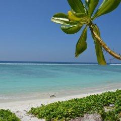 Отель Hiyala Inn Мальдивы, Мале - отзывы, цены и фото номеров - забронировать отель Hiyala Inn онлайн пляж