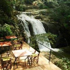 Отель Ella Jungle Resort Шри-Ланка, Бандаравела - отзывы, цены и фото номеров - забронировать отель Ella Jungle Resort онлайн фото 8