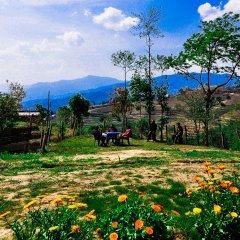 Отель Mount Paradise Непал, Нагаркот - отзывы, цены и фото номеров - забронировать отель Mount Paradise онлайн фото 13