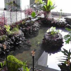Отель Manikgoda Tea Paradise фото 19