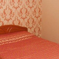 Гостиница Колибри в Абакане отзывы, цены и фото номеров - забронировать гостиницу Колибри онлайн Абакан комната для гостей фото 5