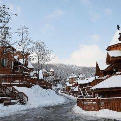 Отель Elf Pension Южная Корея, Пхёнчан - отзывы, цены и фото номеров - забронировать отель Elf Pension онлайн фото 10