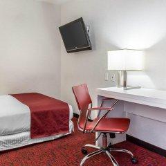 Отель The GEM Hotel - Chelsea США, Нью-Йорк - отзывы, цены и фото номеров - забронировать отель The GEM Hotel - Chelsea онлайн удобства в номере