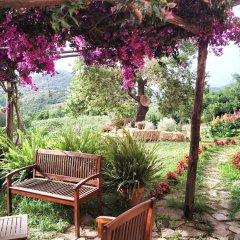 Отель Agriturismo I Moresani Казаль-Велино фото 12