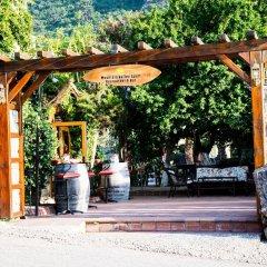 Mountain Valley Apart Hotel & Villas Турция, Олудениз - отзывы, цены и фото номеров - забронировать отель Mountain Valley Apart Hotel & Villas онлайн