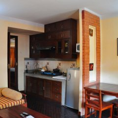 Отель Temple Tiger Thamel Apartment Непал, Катманду - отзывы, цены и фото номеров - забронировать отель Temple Tiger Thamel Apartment онлайн в номере фото 2
